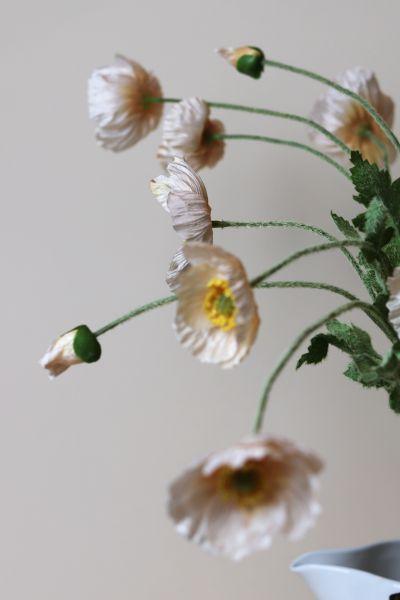 Icelandic Silk Flower Poppies