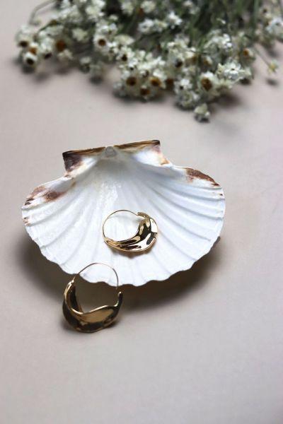 Natural White Scallop Shell Dish