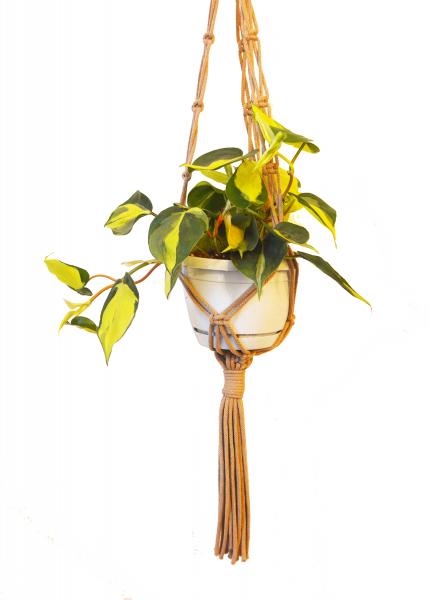 Sustainable cotton macramé plant hanger - Coffee