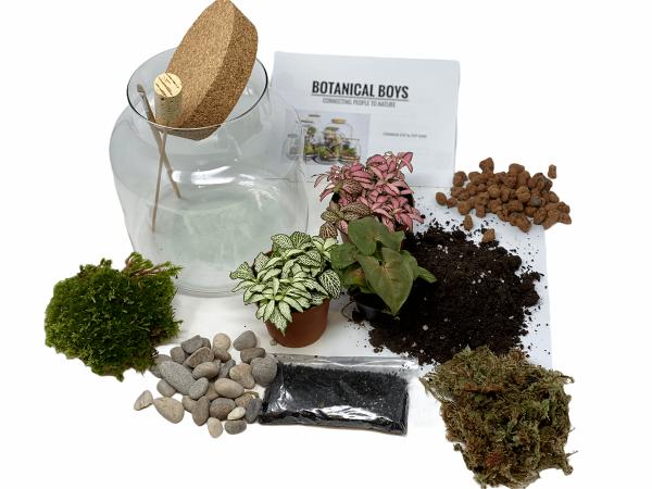 Cork jar terrarium kit