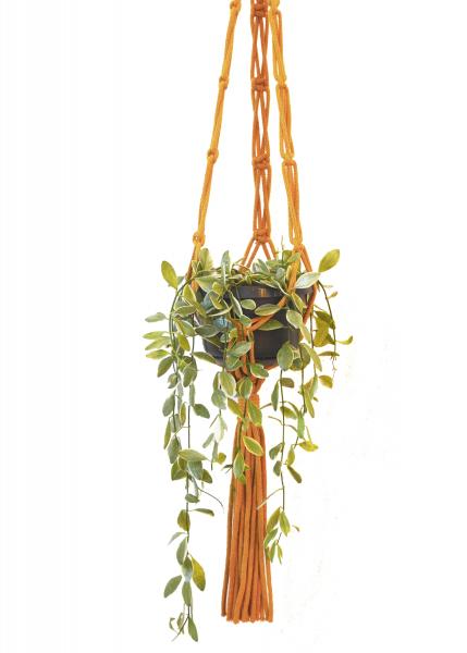 Sustainable cotton macramé plant hanger - Mustard